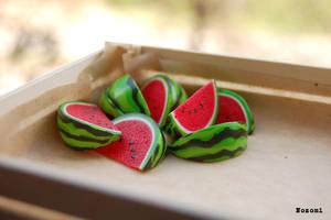 watermelon by Nozomi21