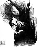 batman by kamalcoker