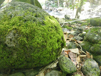 Mossy Rock by Spazbulb