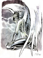 C2E2 2011 Sketch - Hawkgirl by DanielGovar