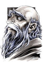 The Hobbit - Balin by DanielGovar