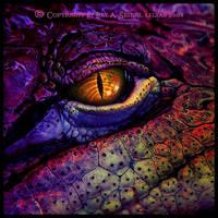 Fire Dragon by Lilyas
