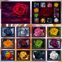 Magical Roses - CALENDAR by Lilyas