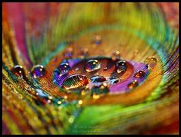 Magic Rainbow by Lilyas
