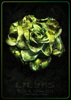 Green Glamour Rose by Lilyas