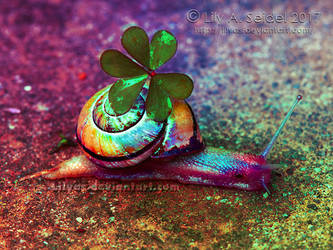Happy Rainbow Snail by Lilyas
