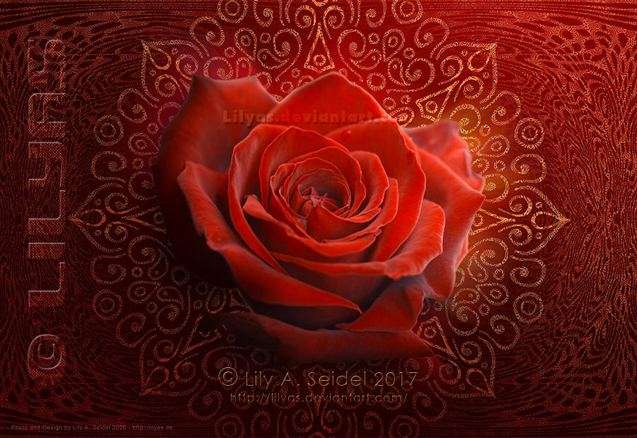 Magical Rose Design - Unlimited STOCK by Lilyas