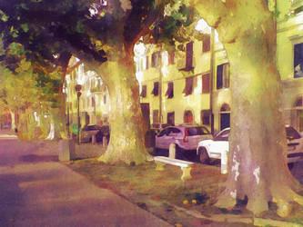 Foto0114  by Corvocollorosso