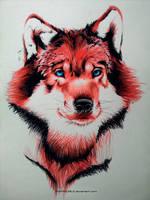 Wolf by Ankredible