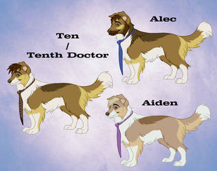 Ten - Alec - Aiden [Reference Sheet] by johndimplechester