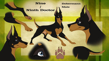 Nine [Reference Sheet] by johndimplechester