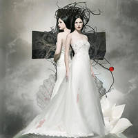 Virgin Blood by AlexandraVBach