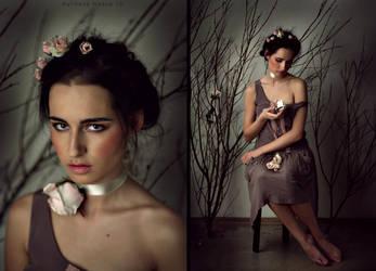 Rose garden5 by NadyaBird