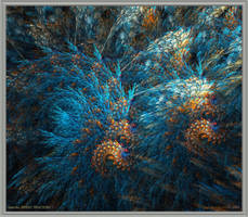 Fractal Waves ... by Fangfingers