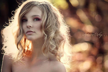 fall's glow by SabrinaCichy