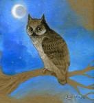 I give a hoot by Sash-kash