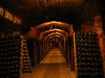 wine cellar 03 by restmlinstock