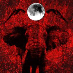 Puniceis Elephantem Qui Nunquam Dormitat by Treflex