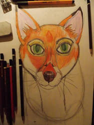Fox in progress by TheRaggleTaggleGypsy
