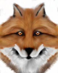 Fox :D by DarkPrediction20