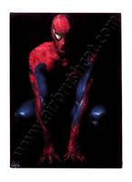 Spider-man by gattadonna