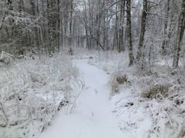 Frozen stream 2 by dani221