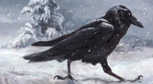 Snow Bird by kenket
