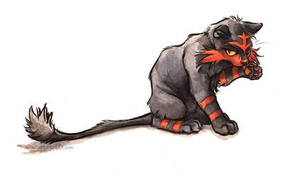 Litten by kenket