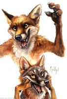 Foxes who refuse to fit on the page. by kenket