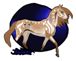 K591 NGS Kailani****** - Hallow Xadden Mare by KimboKah