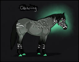 K2244 NGS Odahviing - Sora Taguar Stallion by KimboKah
