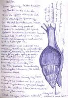 achatina snail- world travel book p.1 by toeki