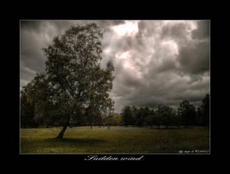 Sudden wind by Jurnov