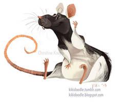 Domino the dumbo rat by kiki-doodle