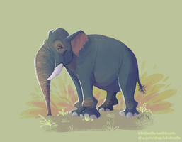 Asian Elephant by kiki-doodle