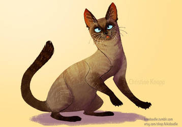 Pet Portrait siamese by kiki-doodle