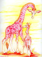 Giraffes by kiki-doodle