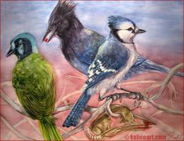 Four Jays by kalicothekat