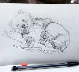 Sleepy Bear by kalicothekat