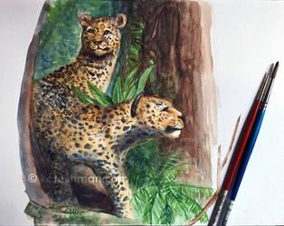 Leopards by kalicothekat