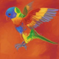 Rainbow Lorikeet by kalicothekat