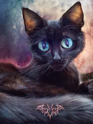 Big eyes: Cat by SPRSPRsDigitalArt