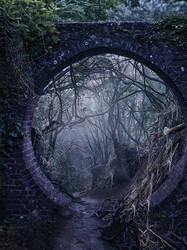 Premade background: creepy forest by SPRSPRsDigitalArt