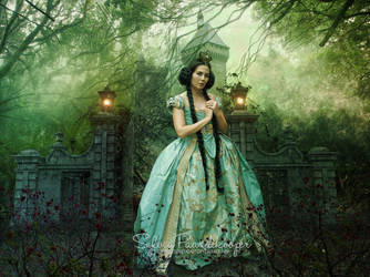 Fairytale Queen by SPRSPRsDigitalArt
