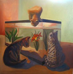 cats by HeatherIhn