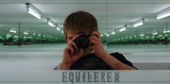 equilerex's Profile Picture