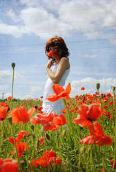 .poppy by immacola
