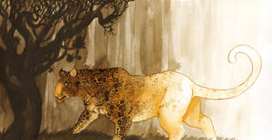 How the Leopard got his Spots by annekaretnikov