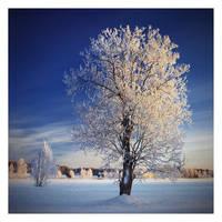 Frozen by jjuuhhaa