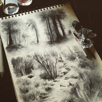 Charcoal sketches by ponyania